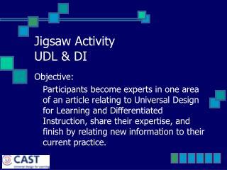 Jigsaw Activity UDL  DI