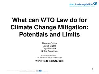 What can WTO Law do for Climate Change Mitigation: Potentials and Limits