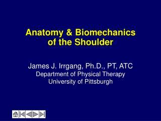 Anatomy  Biomechanics  of the Shoulder