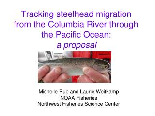 Tracking steelhead migration from the Columbia River through the Pacific Ocean:  a proposal