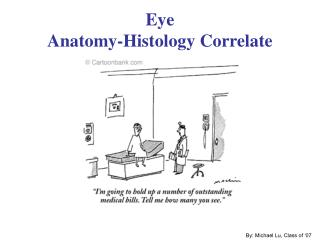 Eye Anatomy-Histology Correlate