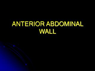 ANTERIOR ABDOMINAL WALL