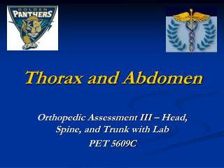 Thorax and Abdomen