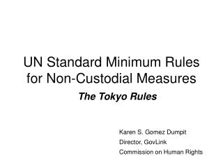 UN Standard Minimum Rules for Non-Custodial Measures