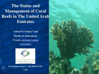 The Status and Management of Coral Reefs in The United Arab Emirates  Ashraf Al Cibahy and Thabit Al Abdesalaam E-mail: