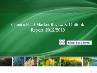 China's Feed Market Review & Outlook Report, 2012/2013