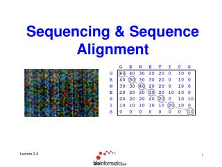 Sequencing  Sequence Alignment