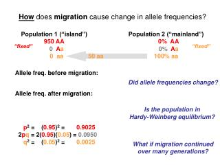 How does migration cause change in allele frequencies