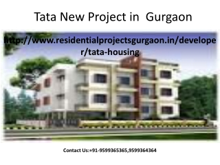 Tata New Project
