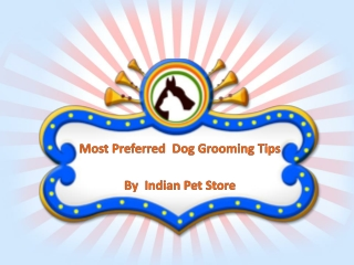 Most Preferred  Dog Grooming Tips