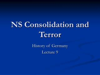 NS Consolidation and Terror