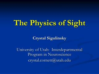 The Physics of Sight