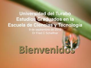 Universidad del Turabo Estudios Graduados en la Escuela de ...