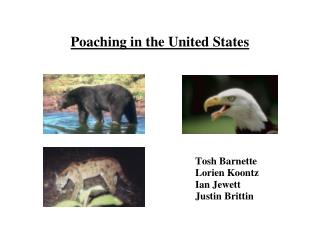 Poaching in the United States