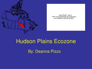 Hudson Plains Ecozone