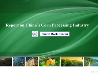 Report on China's Corn Processing Industry