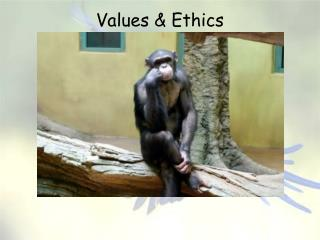Values  Ethics Instrumental or Utilitarian