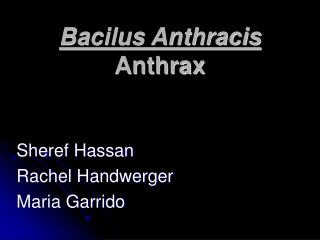 Bacilus Anthracis Anthrax