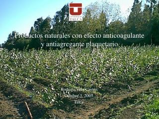 Productos naturales con efecto anticoagulante y antiagregante ...