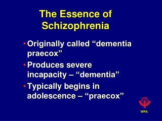The Essence of Schizophrenia