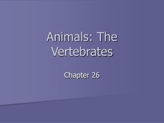 Animals: The Vertebrates