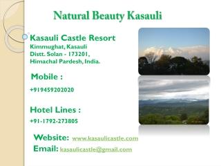 Natural Scenes Kasauli