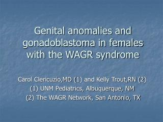 Genital anomalies and gonadoblastoma in females with the WAGR ...
