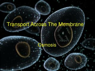 Transport Across The Membrane