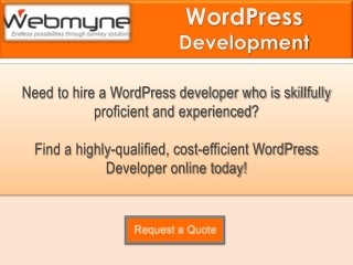 Hire a WordPress Developer Experts with Webmyne System