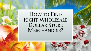 How to Find Right Wholesale Dollar Store Merchandise?