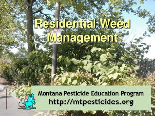 Montana Pesticide Education Program http:mtpesticides