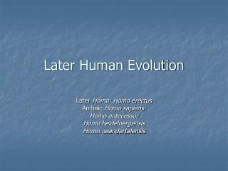 Later Human Evolution