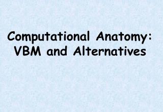 Computational Anatomy: VBM and Alternatives