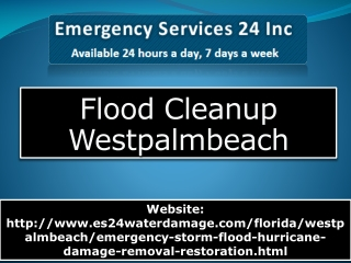 Flood Cleanup Westpalmbeach