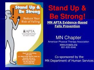 Minnesota Falls Prevention Initiative