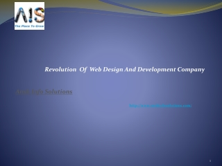 Revolution  Of  Web Design And Development Company