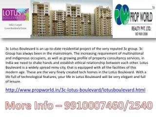 9910007460,3C Lotus Boulevard Noida ,Lotus Boulevard sector