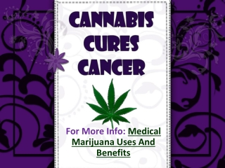 Cannabis Cures Cancer
