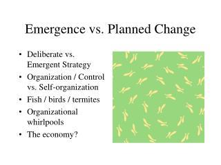 Emergence vs. Planned Change