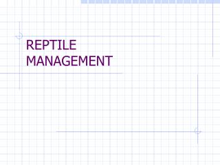 REPTILE MANAGEMENT