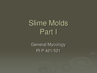 Slime Molds Part I