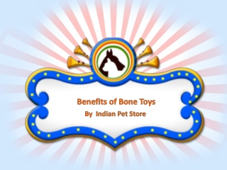 Benefits of Bone Toys By Indian Pet Store