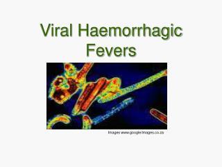 Viral Haemorrhagic Fevers