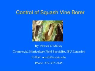Control of Squash Vine Borer