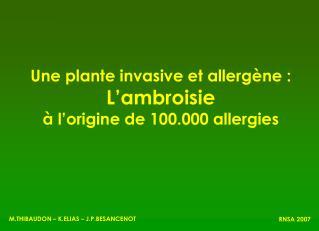 Une plante invasive et allerg