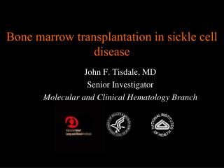 Bone marrow transplantation in sickle cell disease