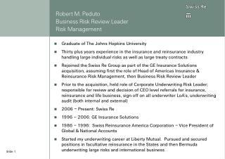 Robert M. Peduto Business Risk Review Leader Risk Management