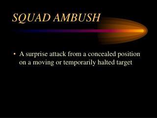 SQUAD AMBUSH