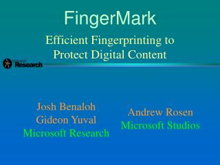 Efficient Fingerprinting to Protect Digital Content