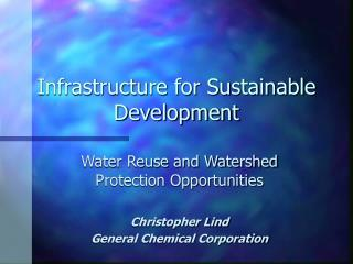 Infrastructure for Sustainable Development